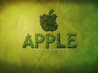 经典不容错过 收藏已久的苹果精美壁纸